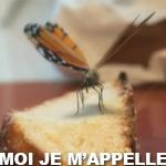 Marathon-MoiJeMappelle